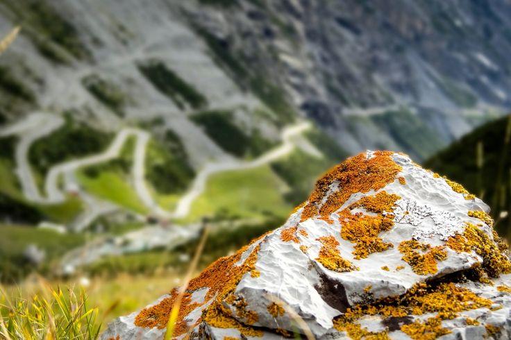 Włochy - górska droga prowadząca na przełęcz Passo del Stelvio