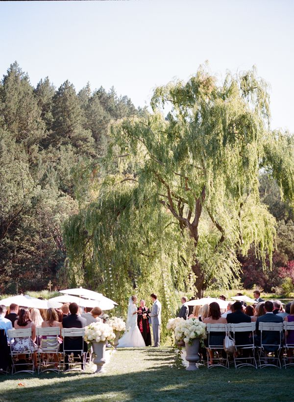 Ceremony Under A Willow Tree At Black Swan Lake In St Helena Ca Photo By Meg Smith Wedding Venues Pinterest And