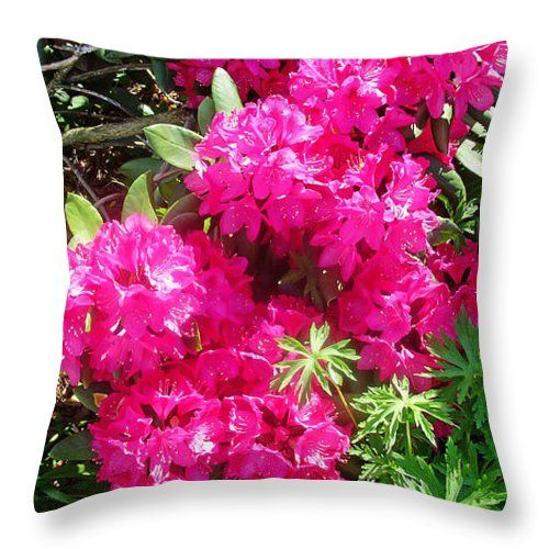 "Azalea Bush Throw Pillow for Sale by Aimee L Maher Photography and Art Visit ALMGallerydotcom. Our throw pillows are made from 100% spun polyester poplin fabric and add a stylish statement to any room. Pillows are available in sizes from 14""x14"" up to 26""x26"". Each pillow is printed on both sides (same image) and includes a concealed zipper and removable insert (if selected) for easy cleaning. Ships within 2-3 business days"