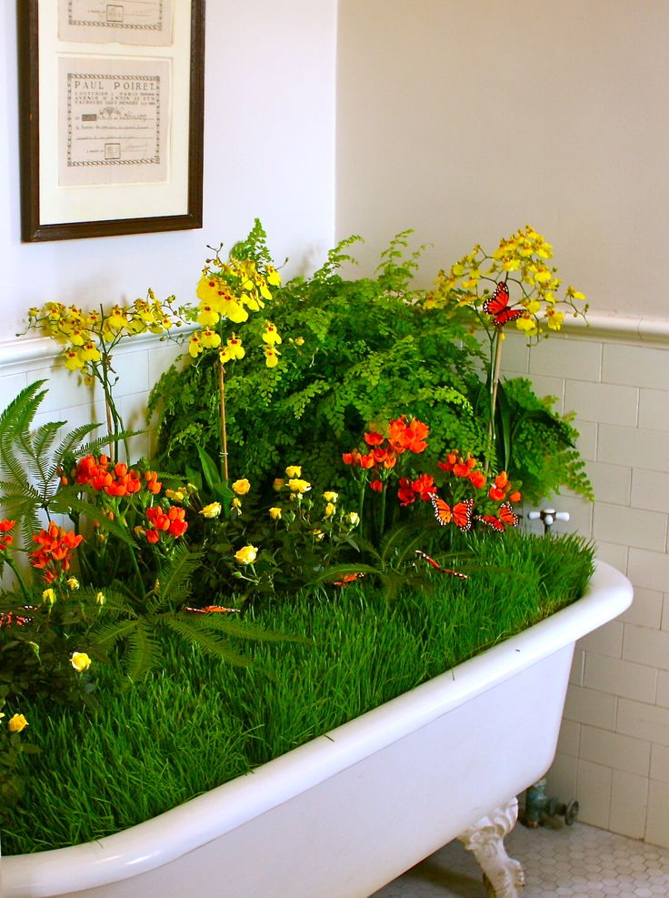 Simple Kitchen Gardens Bethlehem Ct 16 best bathtub gardens images on pinterest | garden bathtub, old