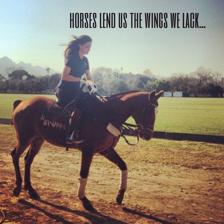 Freedom Horse Quotes. QuotesGram