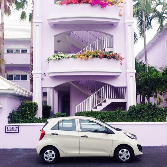 Bright Lilac Hotel in Grand Cayman /