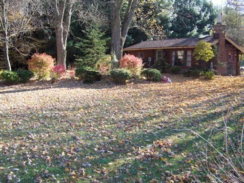 Log cabin & 4 1/2 acres for sale