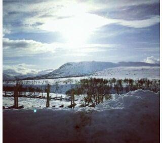 Første gang på ski siden midten av nitti-tallet deilig å være tilbake!! :-)