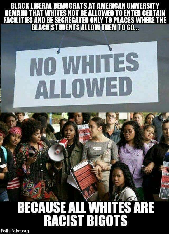 If they only lesson to what they are saying, lol. Us as so called blacks had it better when we was segregated.