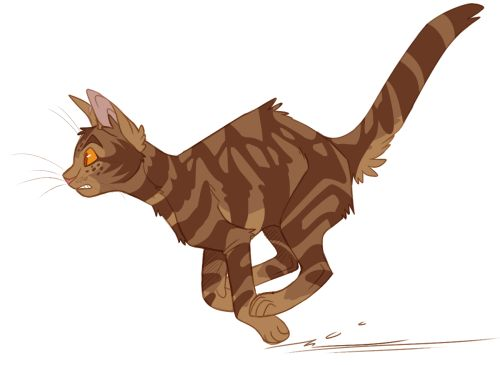 100 Warrior Cats Challenge Day 8 Onestar Warrior Cats