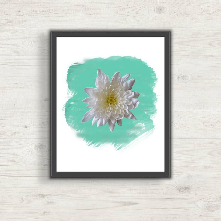 White Chrysanthemum Aqua Watercolor Picture Art, Wall Art, Digital Art, Print at Home, Home Decor, Office Decor, Nursery or Bedroom Decor by CreativesByLAMM on Etsy