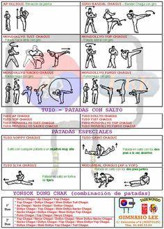 Chagui's/Kicks w/Korean Commands & Images tecnicas de pierna, chagui