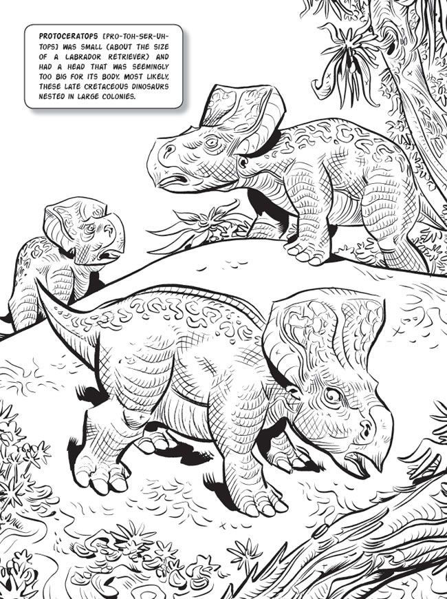 Jim Lawsons Dinosaurs Coloring Book By Lawson Welcome To Dover Publications
