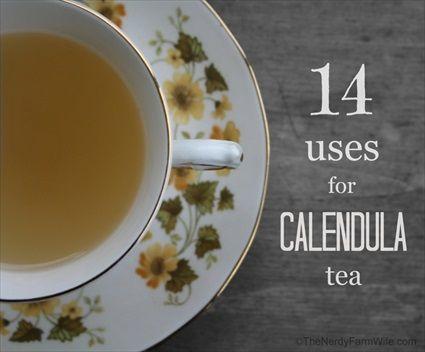 14 Wonderful Uses For Calendula Tea - 3 Ways to Make calendula tea and 14 ways to use it