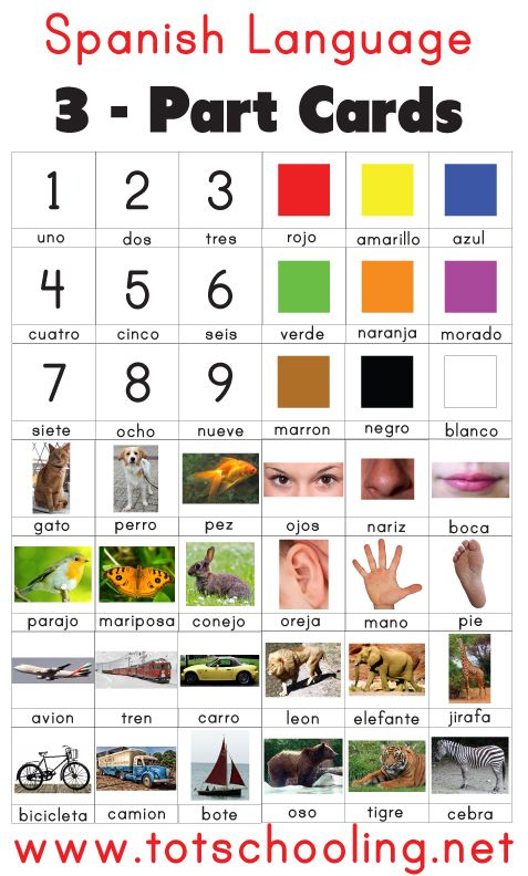 Free Spanish Language 3-Part Cards from Totschooling
