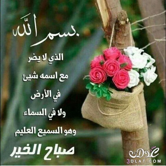 Pin By Khadija Achahid On Flower Beautiful Morning Messages Good Morning Greetings Happy Birthday Quotes For Friends