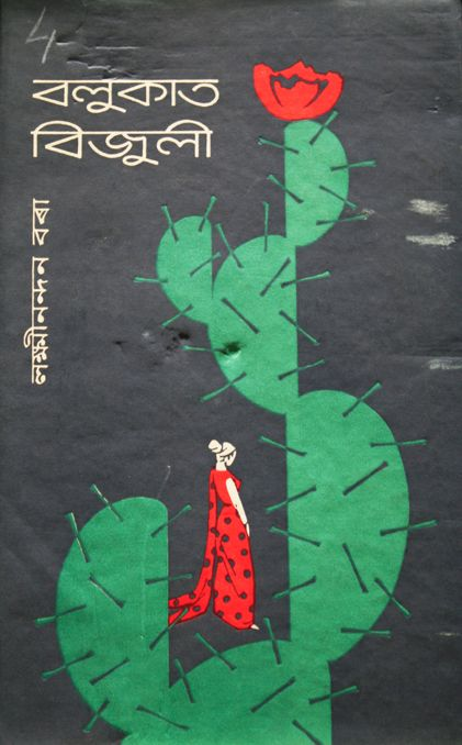 South Asian book cover