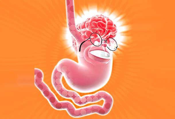 Tenemos otro cerebro en el abdomen que se encarga de las emociones