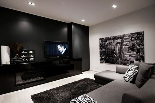 nice and cozy living room with black, white, and grey color scheme