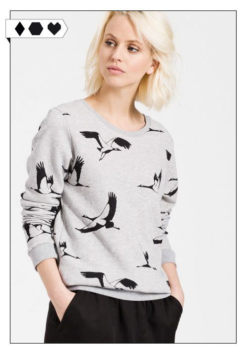 Loni Heading South Sweatshirt (Armedangels): Grauer Pullover mit coolem Vogel-Print. 100% Organic Cotton aus Portugal. GOTS zertifiziert. VEGAN/ECO/SOCIAL/*69,90€* →
