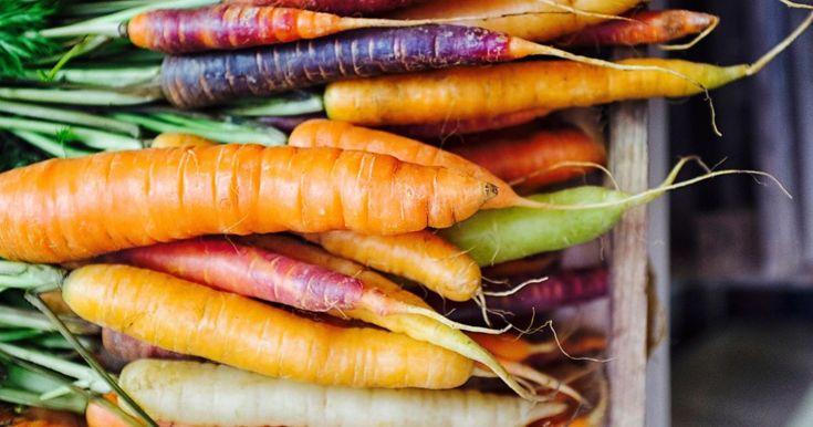 Gav trädgårdslandet dig massor av morötter? Eller vill du bara frysa in en morot? Se till att du kan frysa in det du inte behöver nu.
