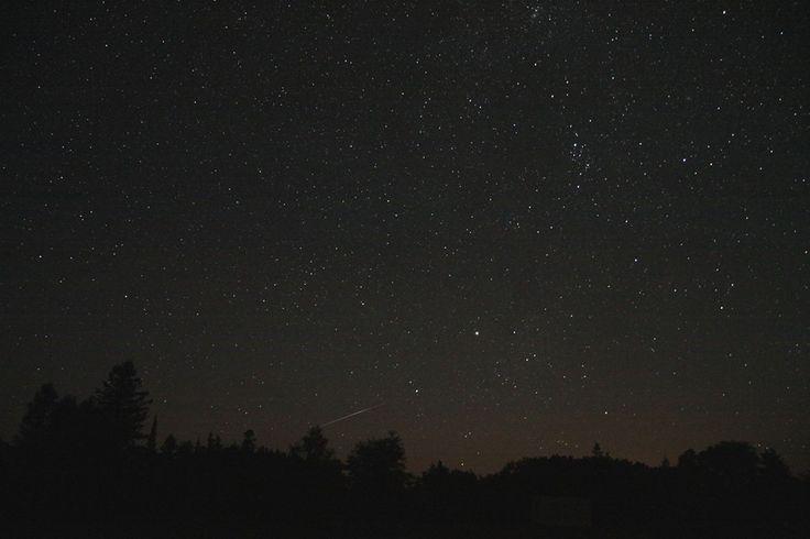 www.gordonspark.com- Shooting star