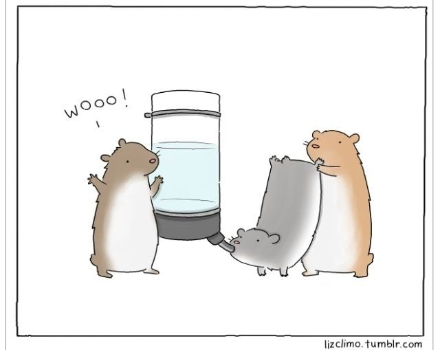 Hamster Chug