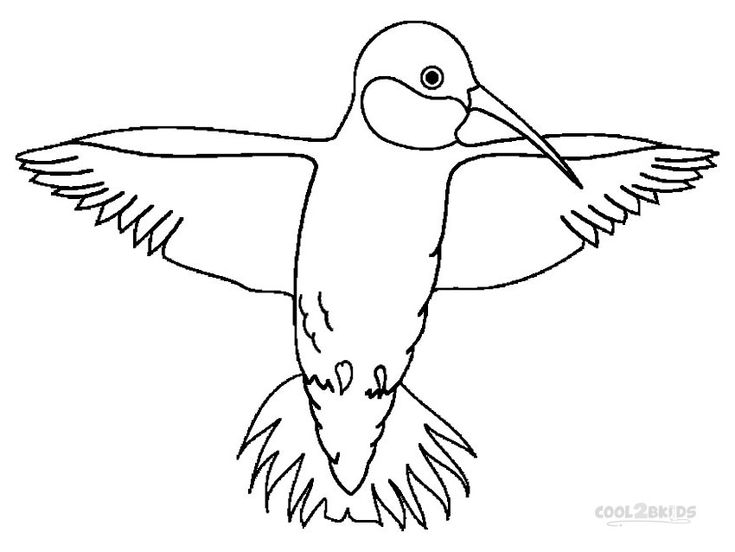 62 best Birds Coloring Pages images on Pinterest