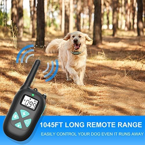 Besthing Dog Training Collar With Remote Dog Shock Collar