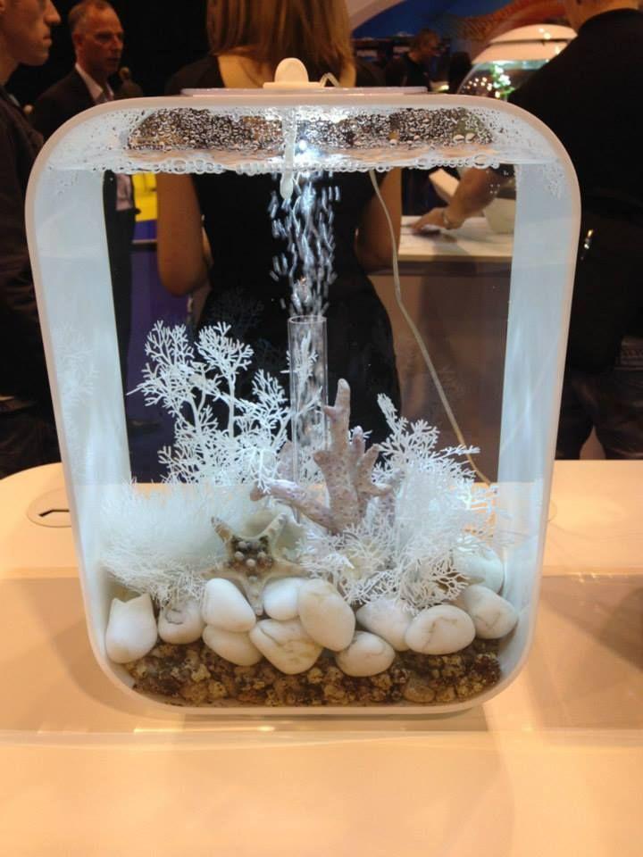 The new biorb in white. #aquarium #biorb #fish