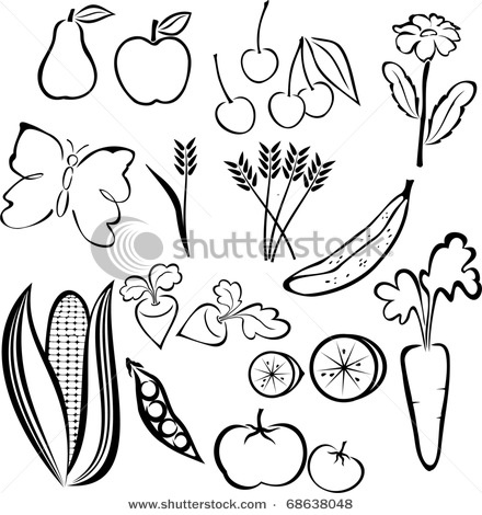 8 best Drawings of food images on Pinterest | Fruit, Line ...