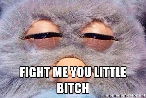FIGHT ME YOU LITTLE BITCH - Furby Fry | Meme Generator