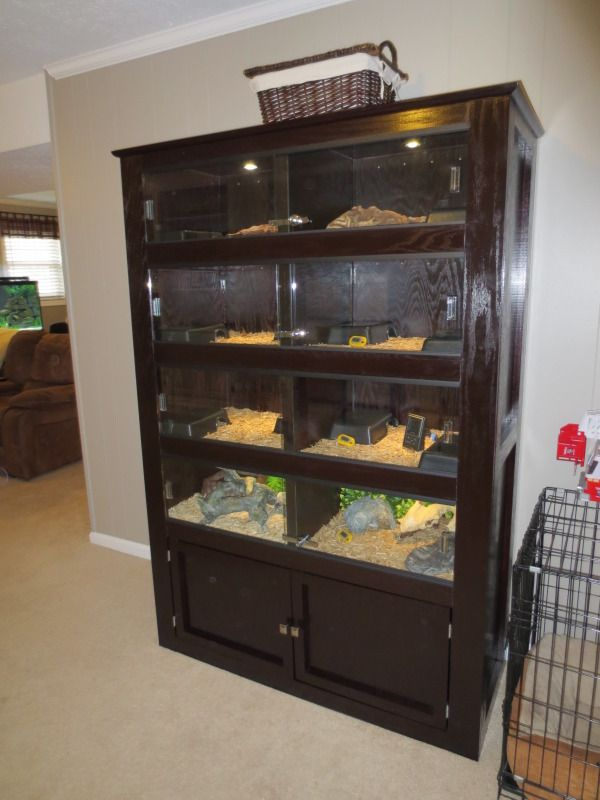 34 Best DIY For The Reptile Hobbyist Images On Pinterest