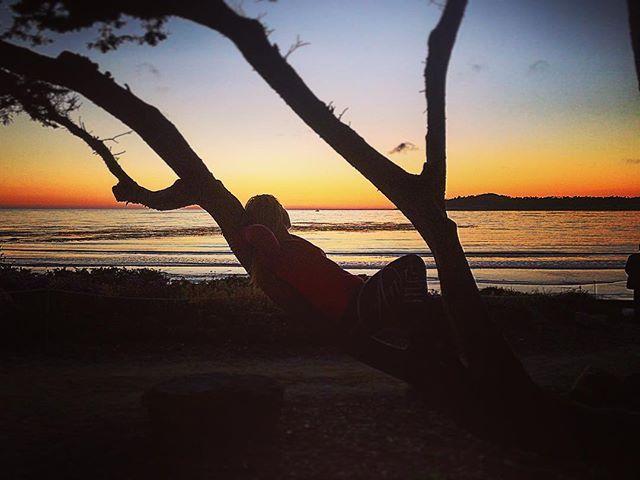 Lovely sunset tonight  in Carmel by the sea! 🌅 En av de vackrare solnedgångarna vi skådat så långt. Vid Carmel by the sea i Kalifornia! 🌅😍 #sunset #solnedgång #horisont #svenskaresebloggar #roadtrip #highway1 #highwayone #carmelbythesea #california #kalifornia #usa #backpackerstory #backpackers #lovelysunset #view #utsikt #traveltheworld #carmel #carmelcalifornia #carmellocals #montereybaylocals - posted by Sofia och Fredrik https://www.instagram.com/jordenrunt365 - See more of Carmel By…