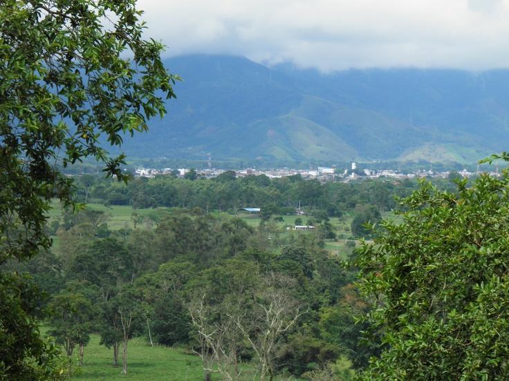 Pitalito desde el cerro horizonte