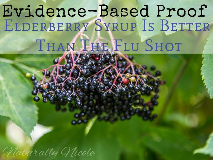 Evidence-Based Proof Elderberry Syrup Is Better Than The Flu Shot