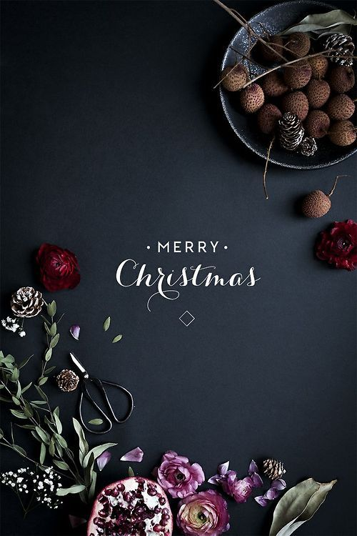 simply-divine-creation:  simply-divine-creation:  Merry Christmas | My Little Fabric