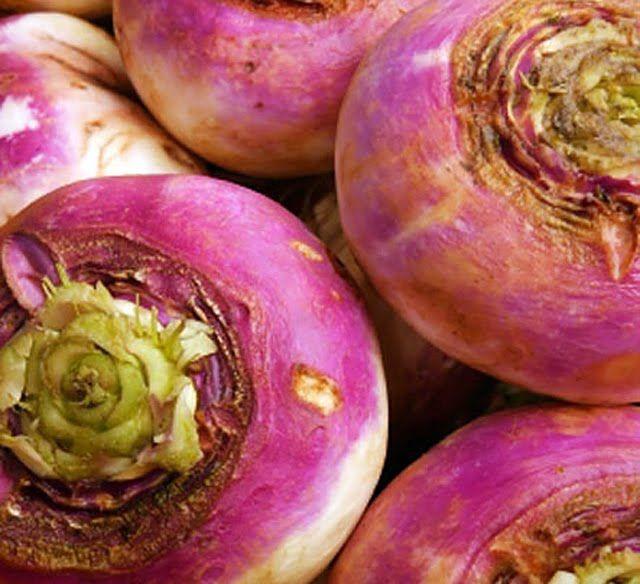 oudegroenten.nl - oude of vergeten groenten