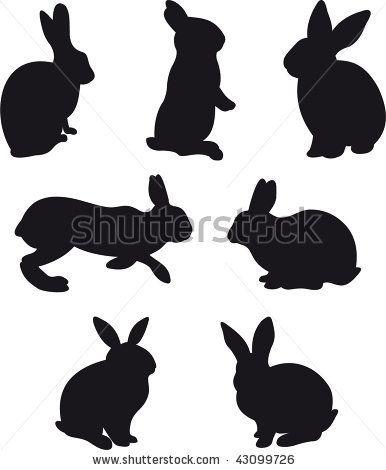 rabbit templates