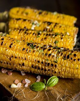 Agriculture, Gros Plan, Le Maïs