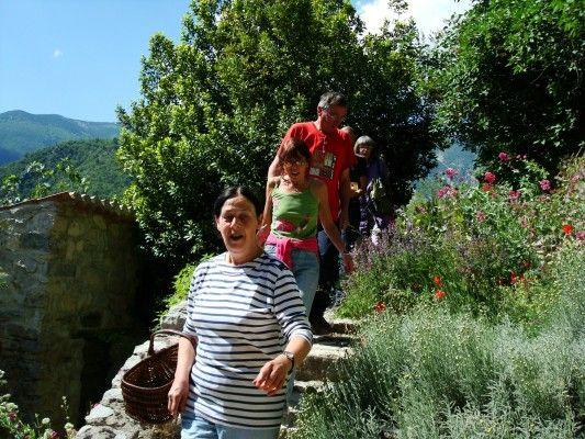 Cuisine aux plantes, fleurs et herbes fraîches à Brantes avec les Aventurières du Goût - http://www.savourez-la-provence.fr/blog/les-aventurieres-du-gout/
