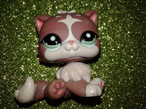 Lps littlest petshop chat persan 1761 persian cat perser - Petshop chaton ...