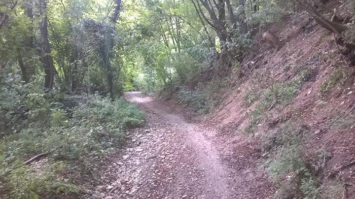 Sentiero di Monte Orbieso a Valsanzibio