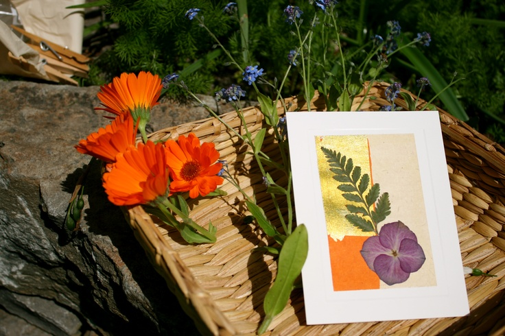 summertime means bright colors, love is in giving #flowercards