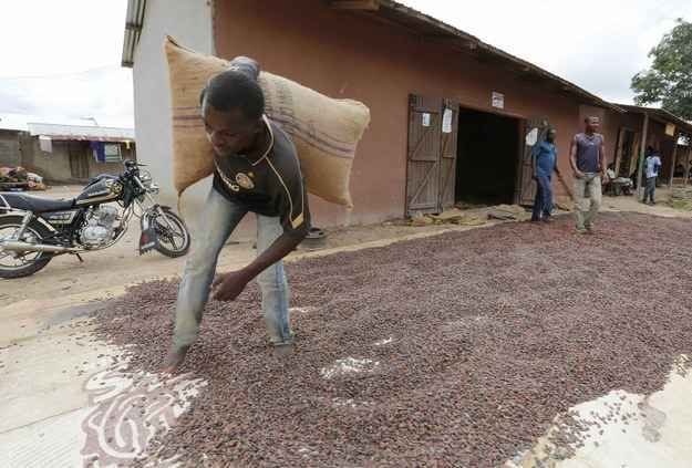 Ivory Coast is the world's largest exporter of cocoa beans, the main ingredient in chocolate. But the impoverished farmers who harvest the beans generally never see and cannot afford to buy the finished product — your chunk of chocolate.