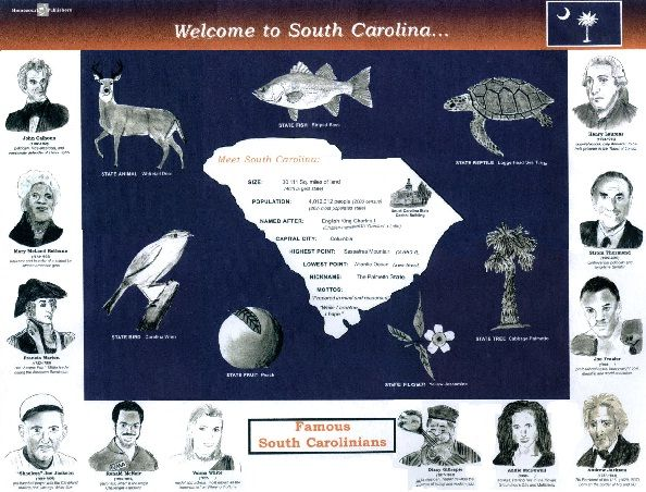 an introduction to the history of south carolina Discover the best resource for university of south carolina (south carolina) homework help: south carolina study guides, notes, practice tests, and more.