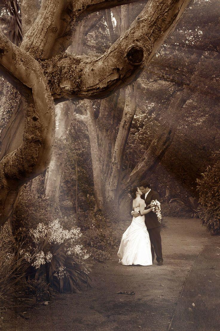 manawatu wedding location.