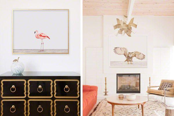 fun ways to use animal prints