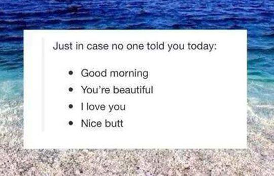 Just In Case Nobody Told You Today