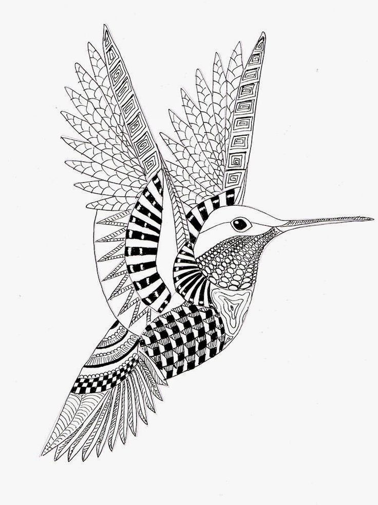 https://i.pinimg.com/736x/70/3f/3d/703f3d8e2c4aecadb213d61d661e79ba--hummingbird-tattoo-zentangle-patterns.jpg