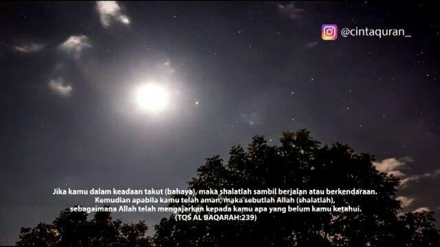 Jika kamu dalam keadaan takut (bahaya), maka shalatlah sambil berjalan atau berkendaraan.  Kemudian apabila kamu telah aman, maka sebutlah Allah (shalatlah), sebagaimana Allah telah mengajarkan kepada kamu apa yang belum kamu ketahui. (TQS AL BAQARAH:239) . Like dan Tag 5 Sahabatmu sebagai Bentuk Kecintaan Kepada #AlQuran .  Follow  @CintaQuran_ @CintaQuran_  .  #Quran #CintaQuran #IndosiaCintaQuran #LOVEQuran #Alquran