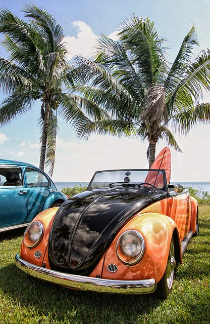 Volkswagen Beetle: Bug ♥