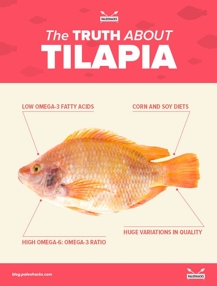 Tilapia: It's mild, inexpensive, and easy to cook. But does it have a place in a healthy diet?   This humble seafood has a way of dividing the Paleo community. Some people love it and can't stop raving about the health benefits. Others think it's dangerous, and they do everything they can to avoid it. To read the full article, visit us here: http://paleo.co/tilapiatruth