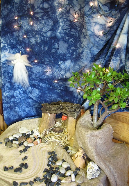 Nativity creche for the kids: indoor houseplants and burlap; paint your own night sky as an art project.  Teach the kids about geography & landscape in the Holy Land at the same time!